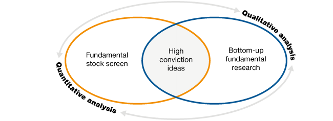 Idea generation in the Investec Equity Fund